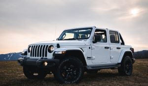 Read more about the article How to select & install half door on jeep wrangler Jk, JL, JT, & TJ?